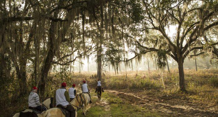 Loveridge Plantation Featured by The Wallstreet Journal