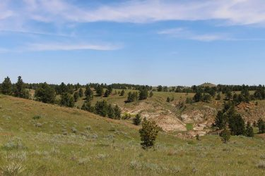 Ranches For Sale - Hall and Hall