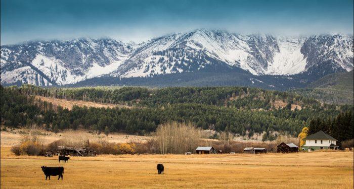 Washington Farm Loans