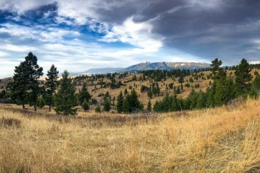 Preparations For Bozeman Ranches For Sale